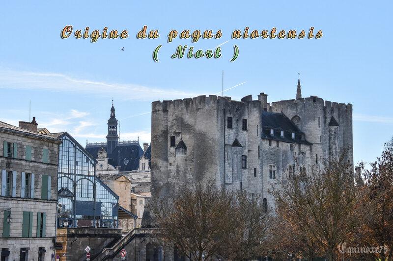 Origine du pagus niortensis ( Niort )