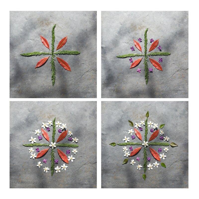 mandala-fleur-feuille17-07
