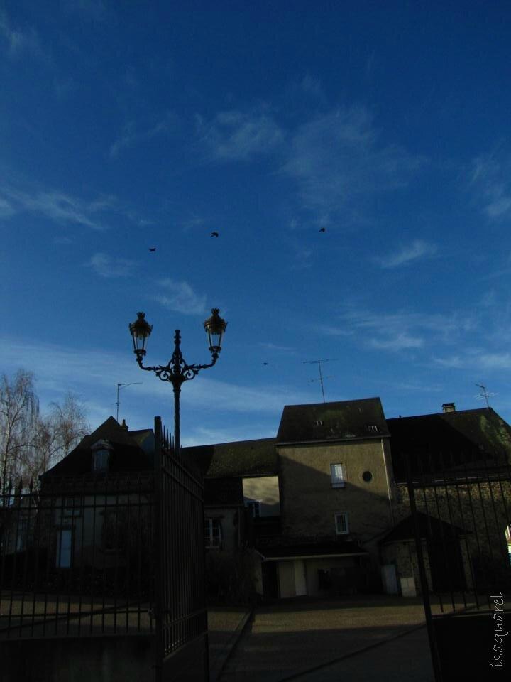 Mayenne7
