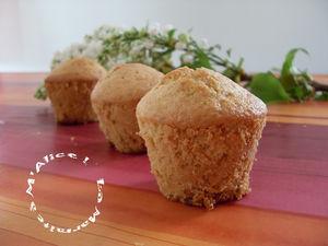 Muffin_Micogicoco_La_Marmite___M_Alice