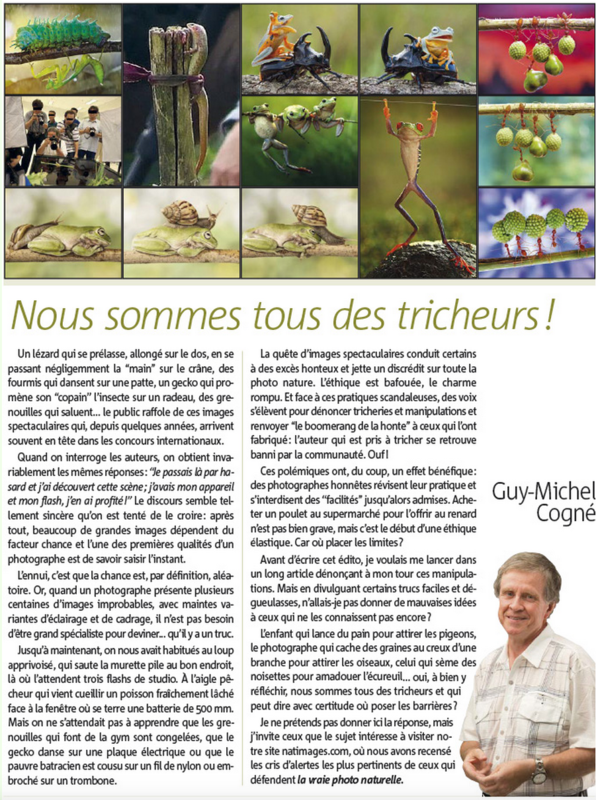 Article du Nat'Images n°31 (Avril-Mai 2015)