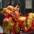 Nouvel An Chinois_France (1)