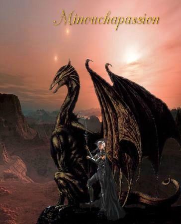 L'homme aux dragons2