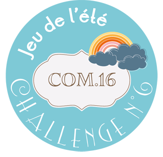 macaron-jeu-ete-2014-challenge-6