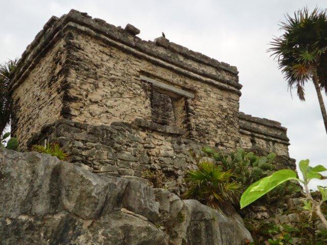 mexique déc 2014 janvier 2015 (1795) [640x480].JPG
