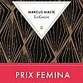 Markus malte, le garçon, zulma, 535 pages.
