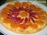 Tartes_aux_abricots_et_prunes_du_jardin___la_p_te_feuillet_e_020