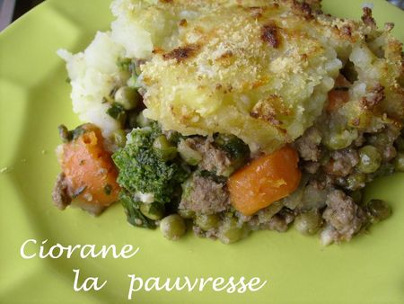 cottage_pie_assiette
