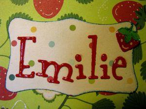 2013 02 Carnet Emilie 02