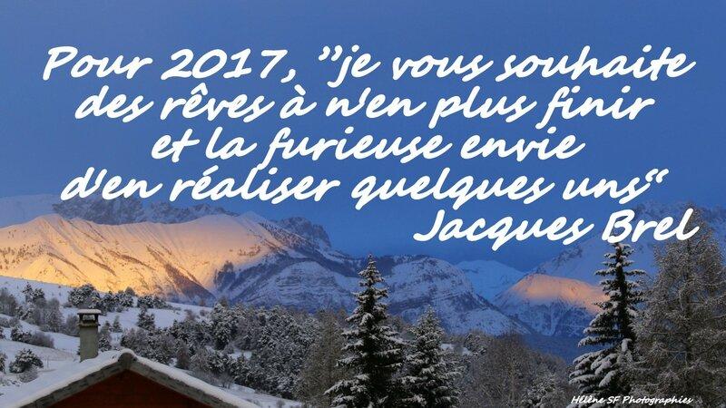 ob_ed3ca7_carte-gratuite-bonne-annee-2017-citat