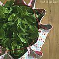 Zero waste #16 : le panier à salade