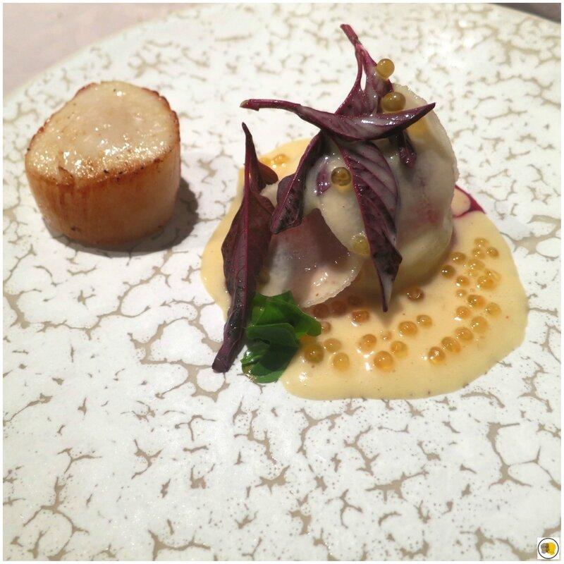 La coquille St Jacques, panais & myrtilles au vinaigre de sureau (1)