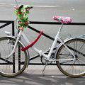 vélo fleuri_1691