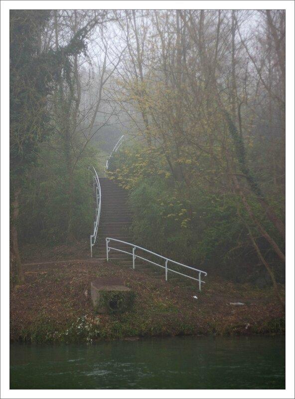ville rampe escalier blanche nature brouillard 170314