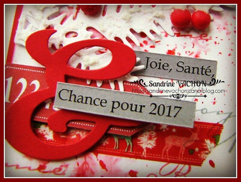Sandrine VACHON Défi 457 (5)