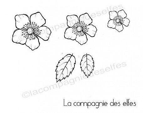 fleur-et-feuilles-du-japon-tampons-nm-gm