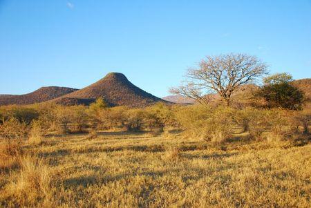 Afrique du Sud (654)