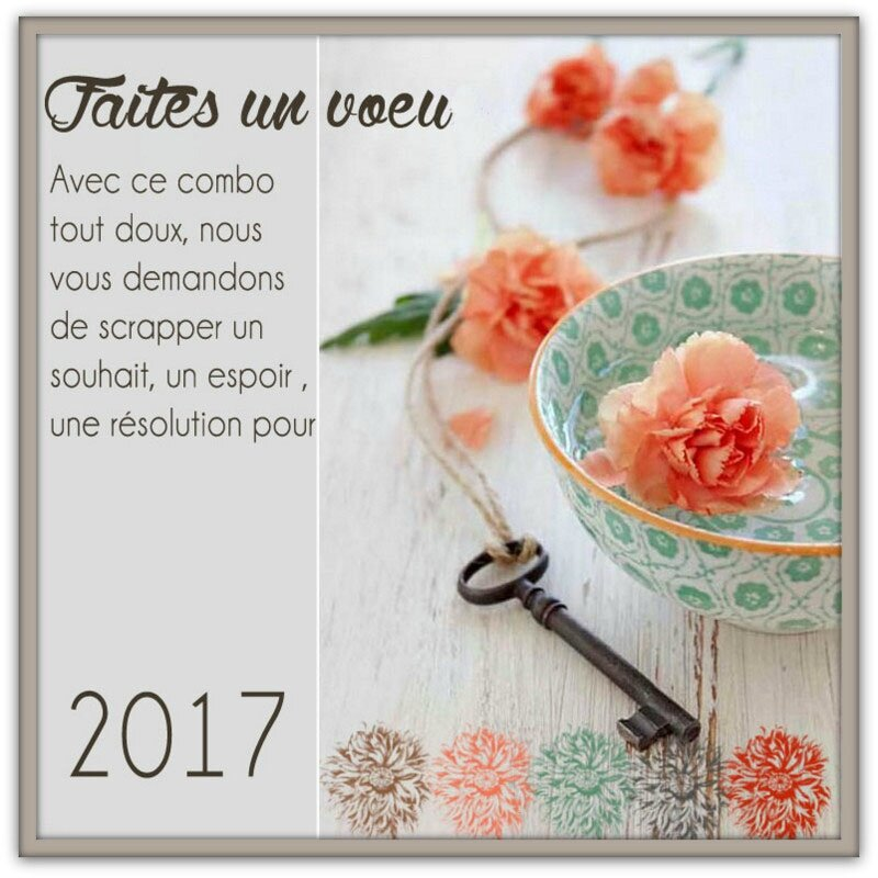 janvier (2)