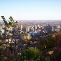 Mont royal 21oct 109