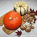 Potimarron et patidou farcis aux champignons, sans gluten et sans lactose (vegan)