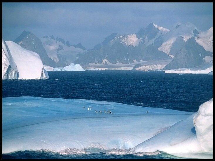 antarctique 13