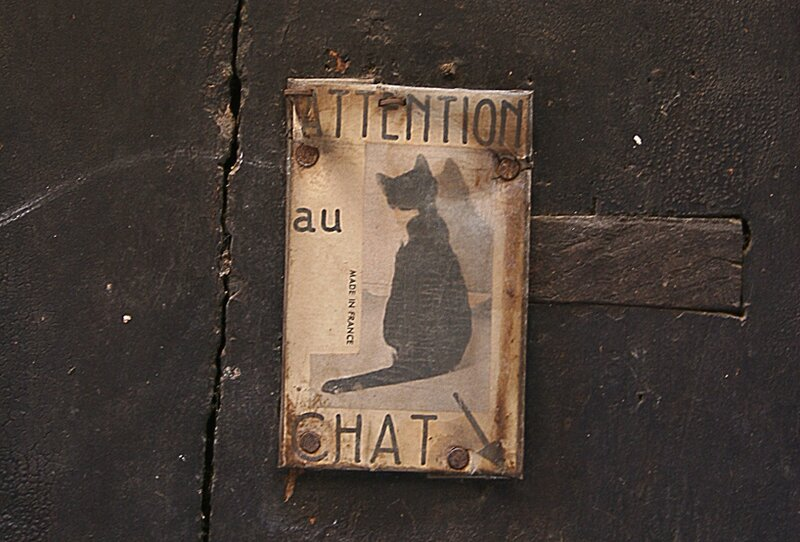 attention au chat
