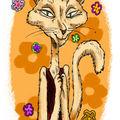 Hippi cat
