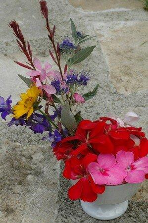 DSC_8507_Bouquet_loupiote