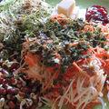 Carottes et courgettes râpées, graines germées luzerne et azuki, tomates séchées, chèvre et parmesan