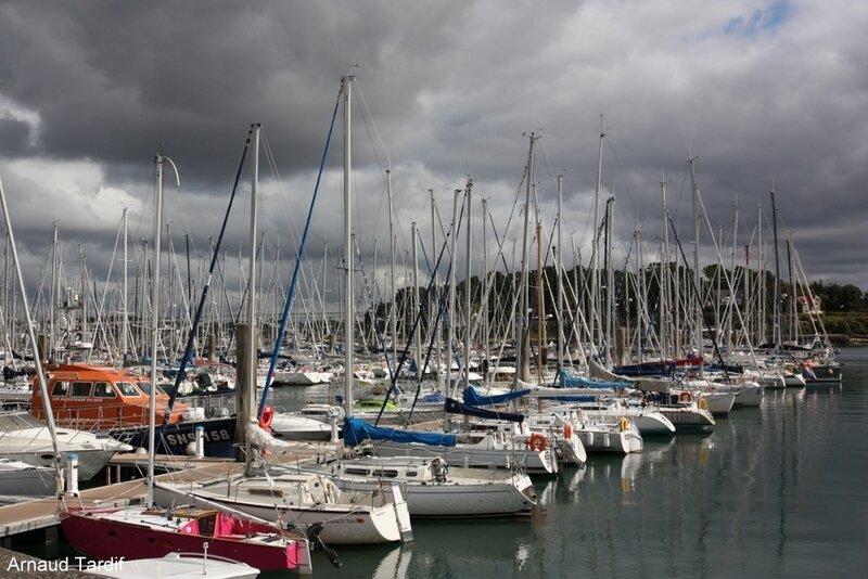 001443 Larmor-Baden - Le Port de Plaisance de la Trinité-sur-Mer