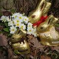 Le printemps est là... le chocolat aussi!!!!