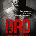 Bad tome 5 - amour insaisissable de jay crownover