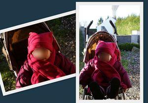 2011_c01_bonnet Alice