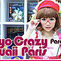 [convention] tokyo crazy kawaii paris ce week-end