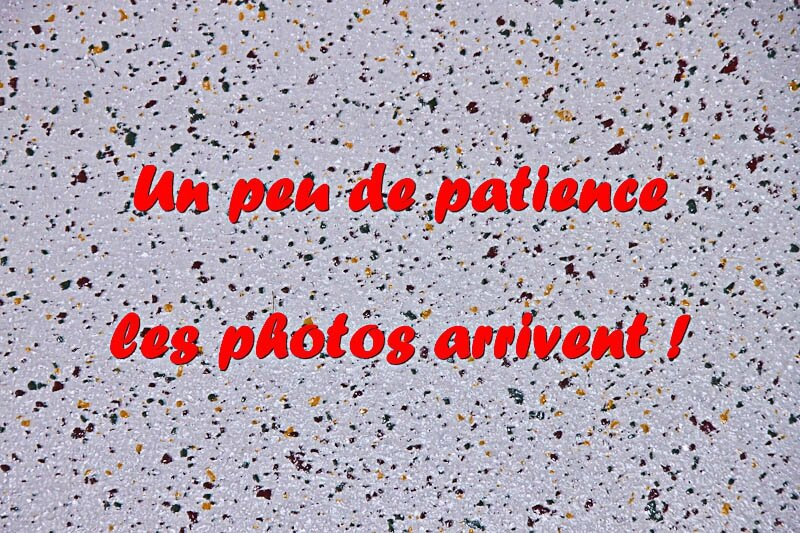 IMG_1310-3