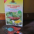 Un anti-limaces bio et efficace...ça existe !