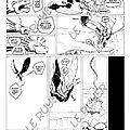 page10 came de dragon copie A4 web