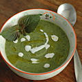 Veloute vert, courgettes & shiso