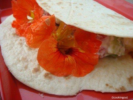 Tortilla de blé aux capucines