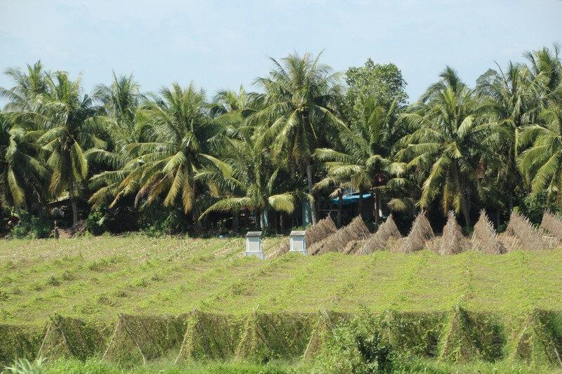 Le Mekong et alentours 1