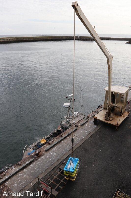 00952 Pouldreuzic - Pays Bigouden Sud - Retour des bateaux de pêche au Guilvinec blog