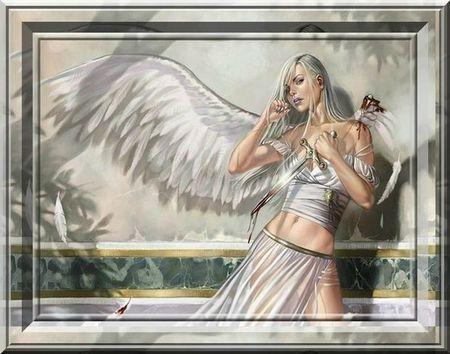 ange 3