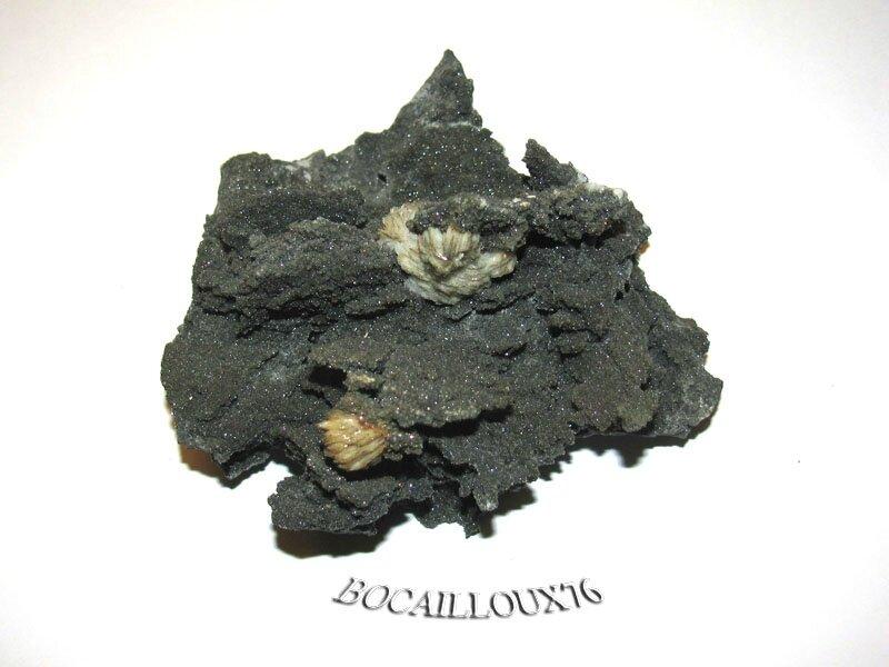BARYTINE-Pyrite H263 - 30