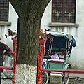hangzhou suzhou mai 2011 papamaman 559