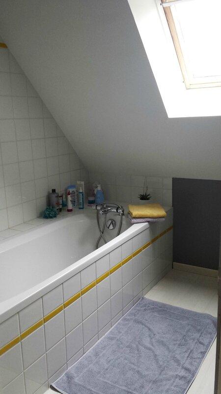 2017 03 20 - salle de bains repeinte (2)