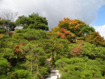 Japon_Kyoto_2009_1986